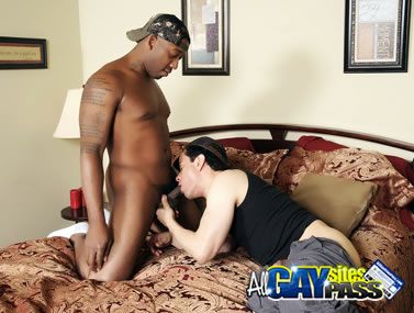 Gay Interracial HDVC156 4