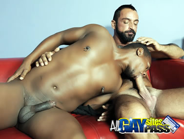 Gay Interracial HDVC157 4